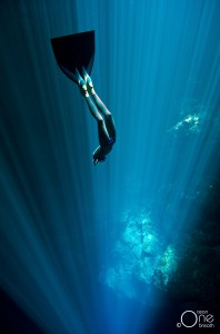 Christina freediving with a monofin. Photo: One Ocean One Breath